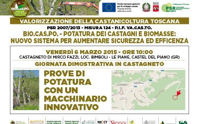 6 marzo 2015, giornata dimostrativa in castagneto: prove di potatura a Castel del Piano (GR)