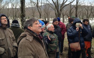 Comunicato stampa – Investimenti ed innovazione per il rilancio della castanicoltura in Toscana